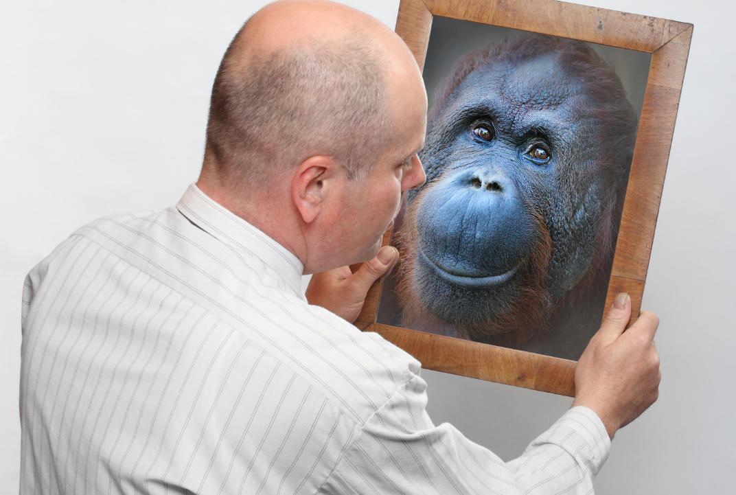 Quanto è stata (ed è) importante la dentatura nell'evoluzione dell'uomo?